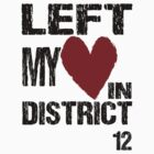 In District 12 by itismestwin