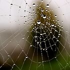 Imagine a multidimensional spider&#x27;s web... by Gregoria  Gregoriou Crowe