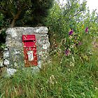 A Post Box in Cornwall by hootonles