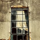 Tattered Drapes by SuddenJim