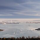 Portsmouth from Portsdown Hill by Andrew Walker