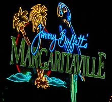 Margaritaville at night by imagetj
