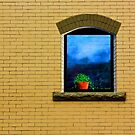 Window on a brick wall by carlosramos