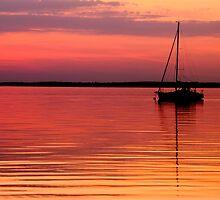 Golden Water by Steve  Savoie