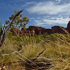 Life in the Red Centre by StupidBeagle