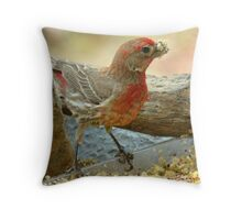 I LOVE This Stuff!!! Throw Pillow