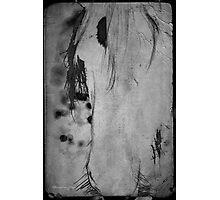 Horse sense ... Photographic Print