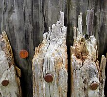 Old Pier Post - Now a Garden Seat by RevJoc