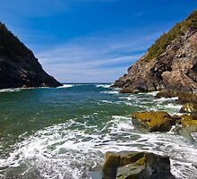 Shoe Cove, Newfoundland by Stephen Rowsell