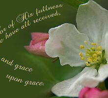 His fullness: Grace upon grace ~ John 1:16 by Robin Clifton