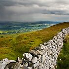 Sunshine and Showers by Andrew Leighton