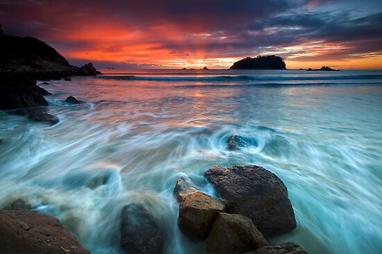 Motuotau Island Dawn Fan Rush by Ken Wright