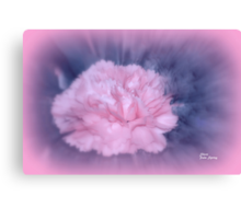 LET THERE BE LIGHT AND THERE WAS PINK!! Canvas Print
