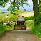 Down Yon Lonning- Cumbrian Lane. by Lou Wilson