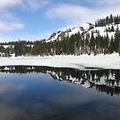 Fall Creek Mountain by Patty (Boyte) Van Hoff