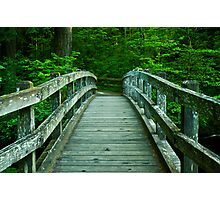 Bridge Over Silver Creek Photographic Print
