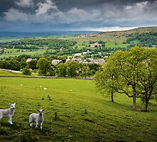 Langcliffe - Yorkshire Dales National Park. UK by David Lewins