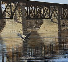 Cayuga Train Bridge by Billy-Jack  Milligan