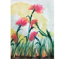 Pink flowers in the wild, watercolor Photographic Print