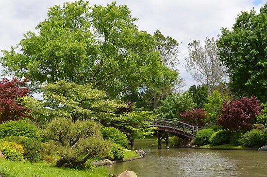 Japanese Inspired Garden by Paula Betz