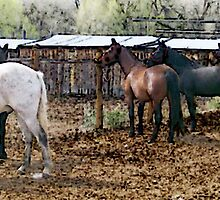 Grooming the Horses by Lenore Senior
