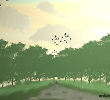 Going home to Roost by sarah63