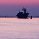 The Ghost Ship by Mattia Oselladore