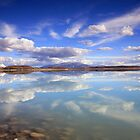 Lake Pukaki Reflections by Cameron B