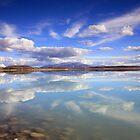 Lake Pukaki Reflections by Cameron B