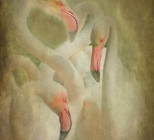Flamingo's in Pastel by Catherine Hamilton-Veal  ©