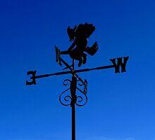 Witch Way the Wind Blows by friendlydragon
