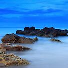 wild ocean by kathy s gillentine