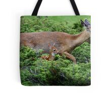 Mother and child reunion - White-tailed Deer Tote Bag