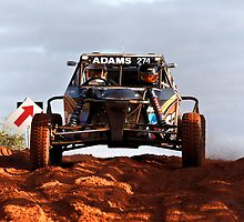 Car 274 - Finke 2011 Day 1 by Centralian Images