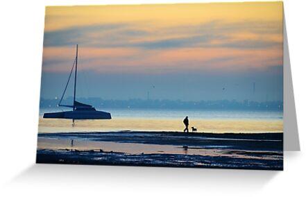 Must love long strolls along the beach, preferably with tennis balls... by Georgie Hart