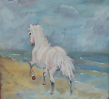 Welsh Mountain Pony by Belinda Galsworthy