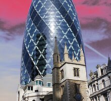 Old and new - Gherkin by Jasna