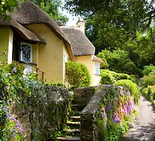 Selworthy Village, Exmoor by David-J