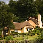 Selworthy Village Shop, Exmoor by David-J