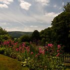 Selworthy Rest and Tranquility, Exmoor by David-J