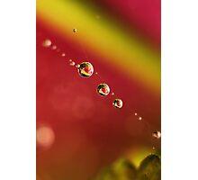 Three In A Rainbow Photographic Print