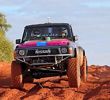 Car 883 - Finke 2011 Day 1 by Centralian Images