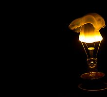 Ignite - Birth of an idea - Burning Bulb by Biren Brahmbhatt