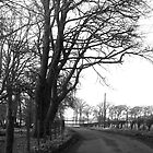 Black and White Landscape by LouisexxxM