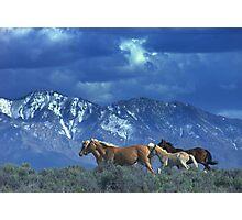 Where Heaven and Nature Meet  Photographic Print