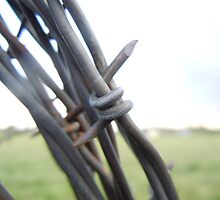 Circular Barbed Wire by jkohala