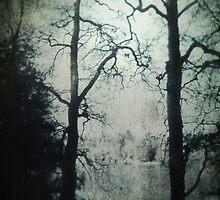 Mystic Green Lake by Citizen