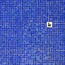 Lake in squares. by Beata  Czyzowska Young