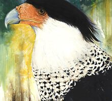 Crested Caracara by ampburks