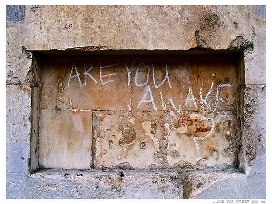 ARE YOU AWAKE? YES! xo by Jay Taylor